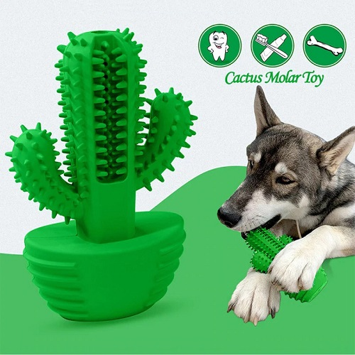 Cactus Dog Toothbrush